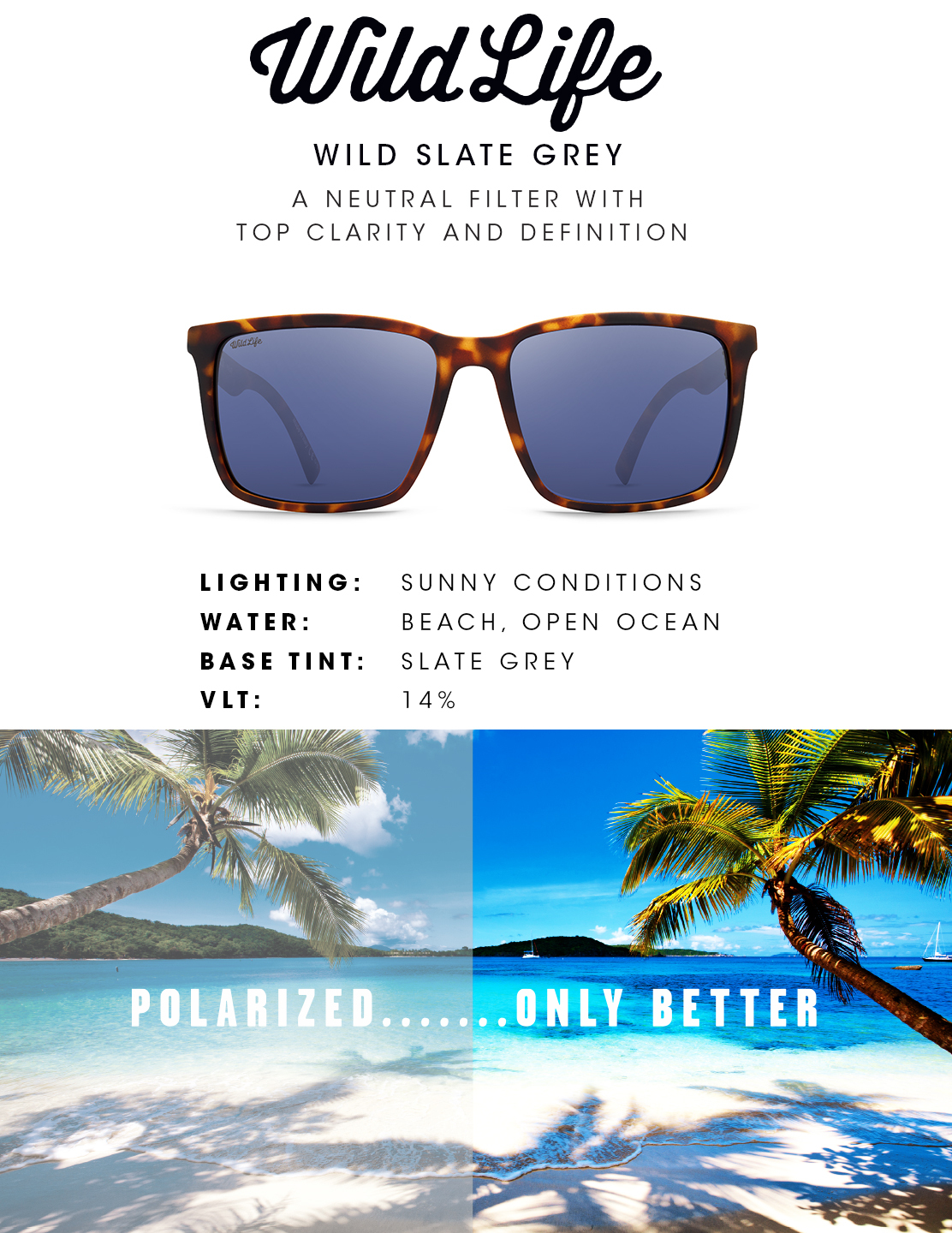 Slate Grey Wildlife Lens - Sea Tints